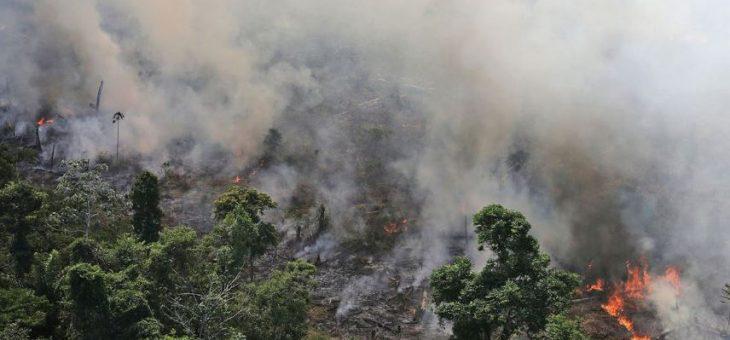 Los incendios del Amazonas podrían ser la 'muerte' del mundo